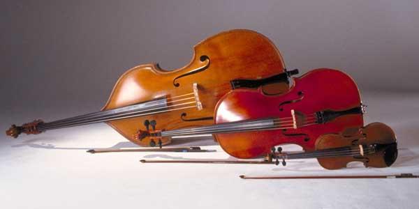 趣味におすすめ!弦楽器の種類と始め方についてのサムネイル画像